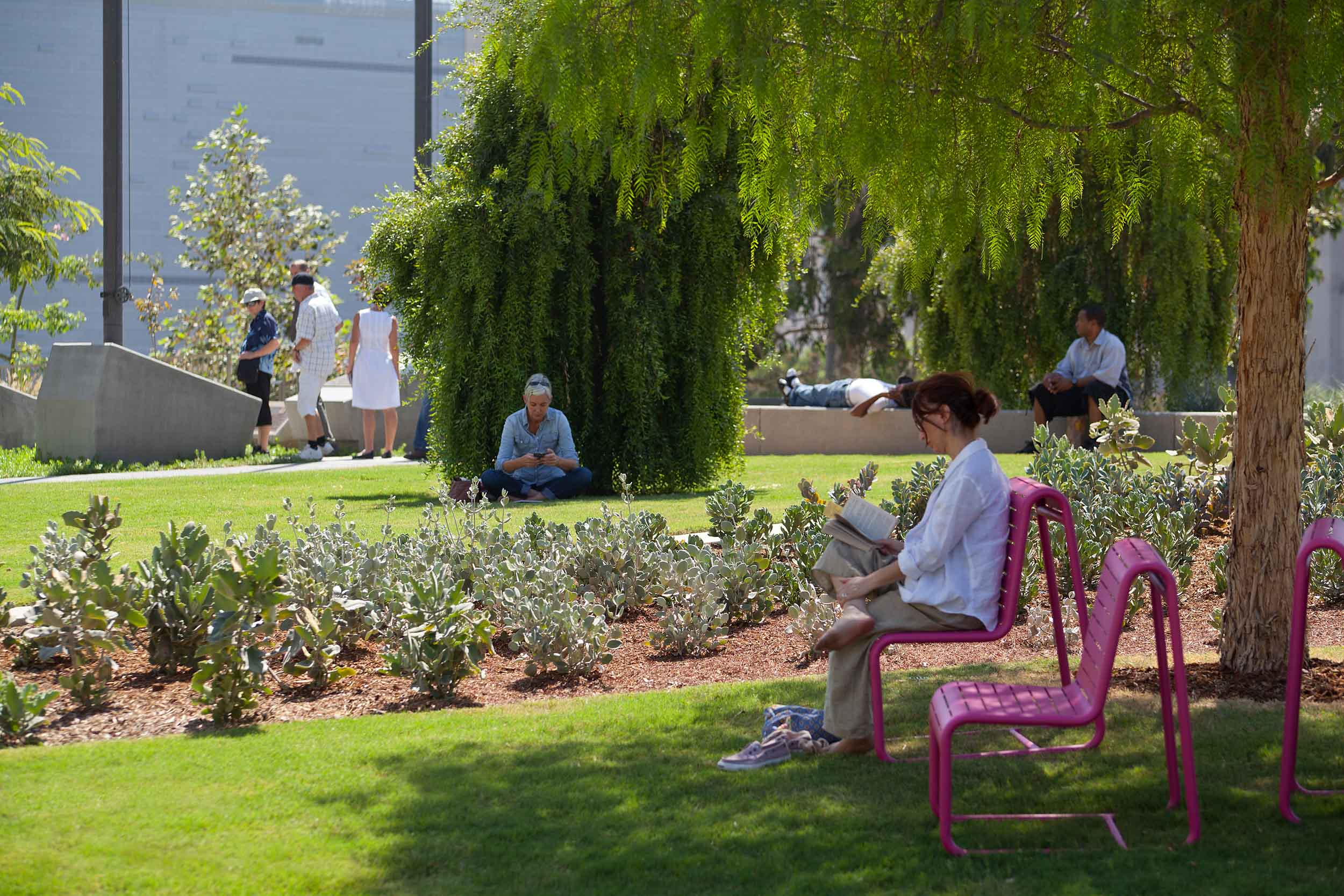woman seated at a pink chair reading a book under a tree