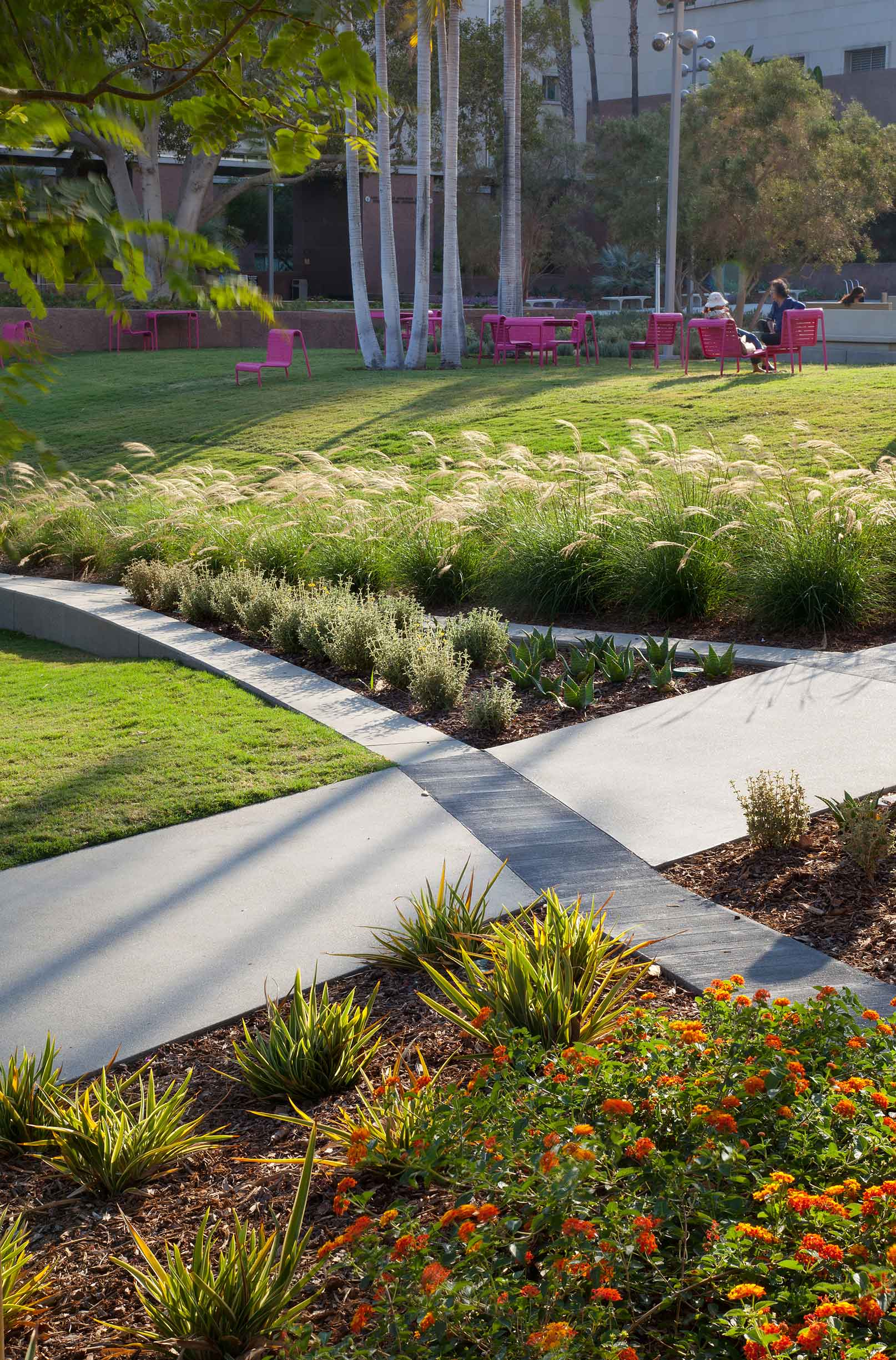 two intersecting paths with a lawn on either side, lush plants, and pink seating in the background
