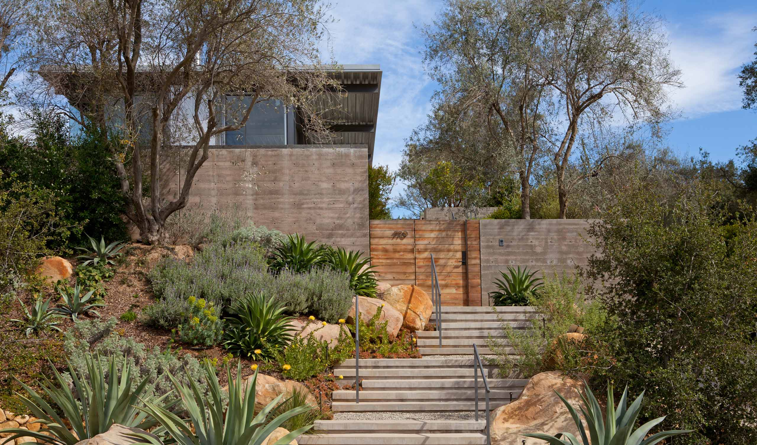 residence entrance with steps and desert planting