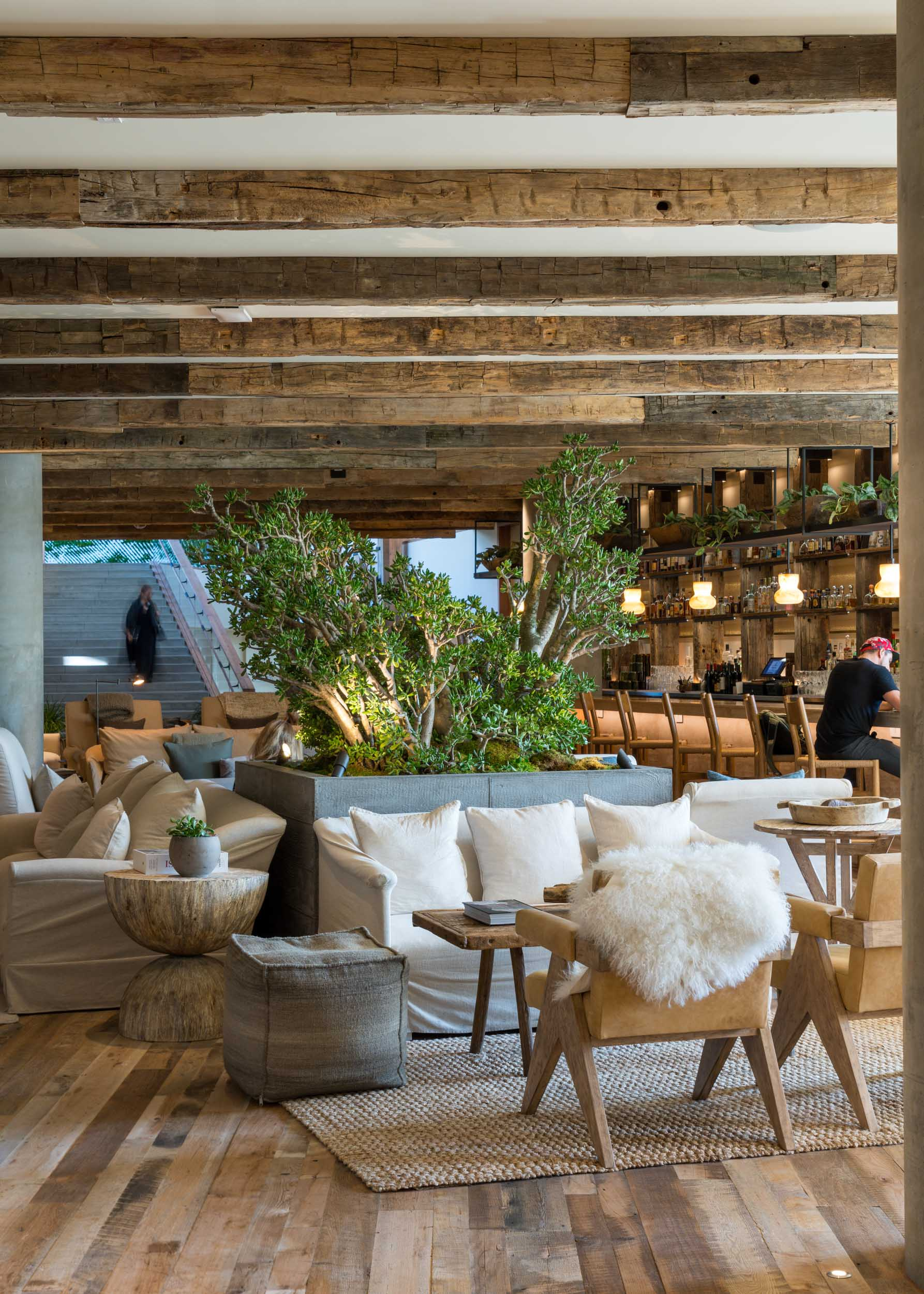 interior lounge with wood planks