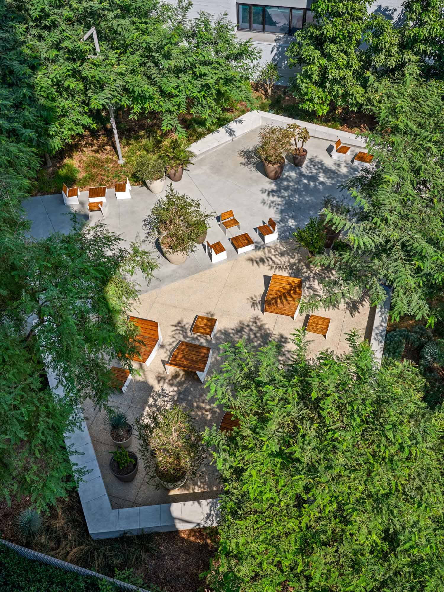 aerial view of south park commons with wooden furniture on a cement patio and trees forming a canopy around the perimeter