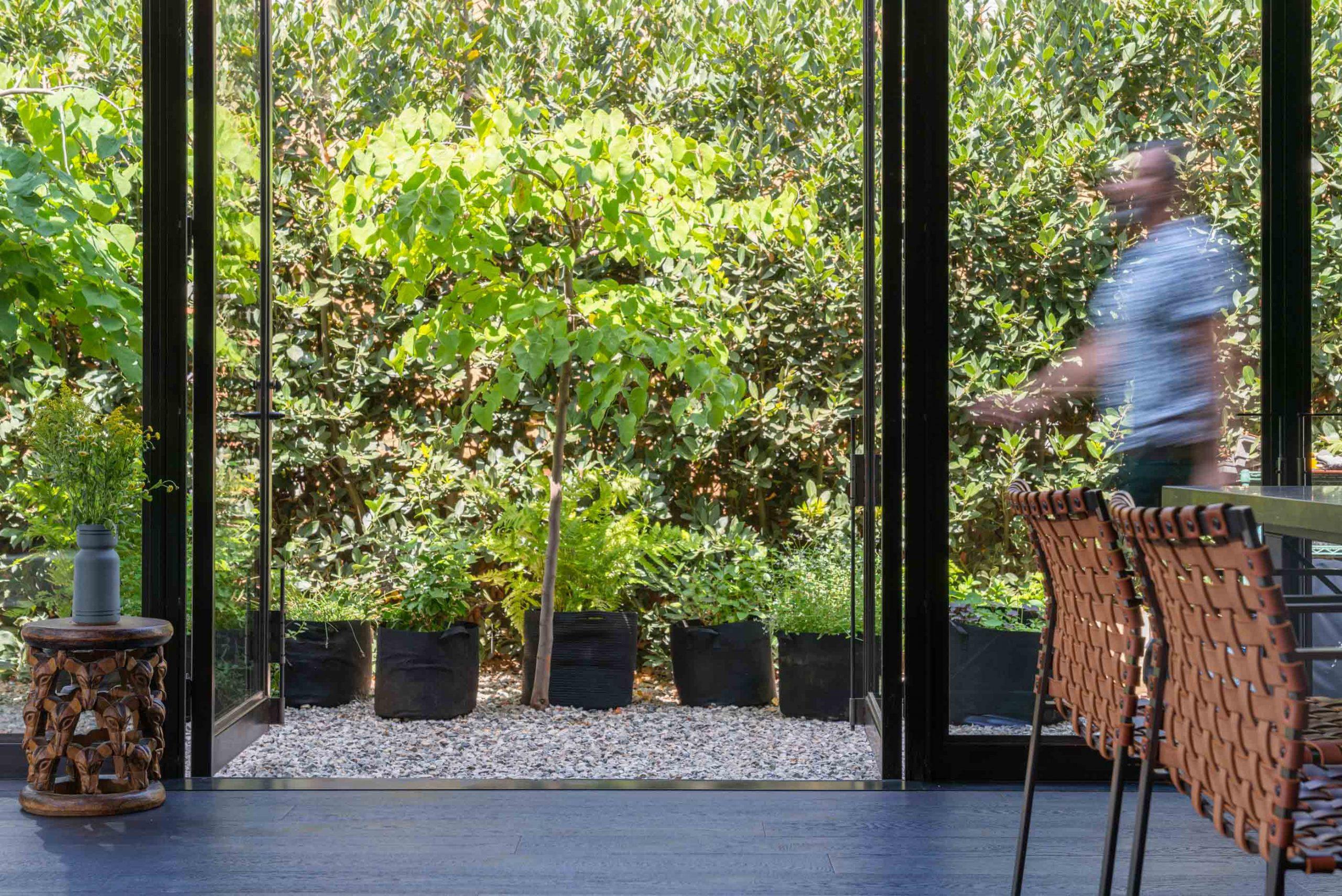 man walking past open glass door with plants