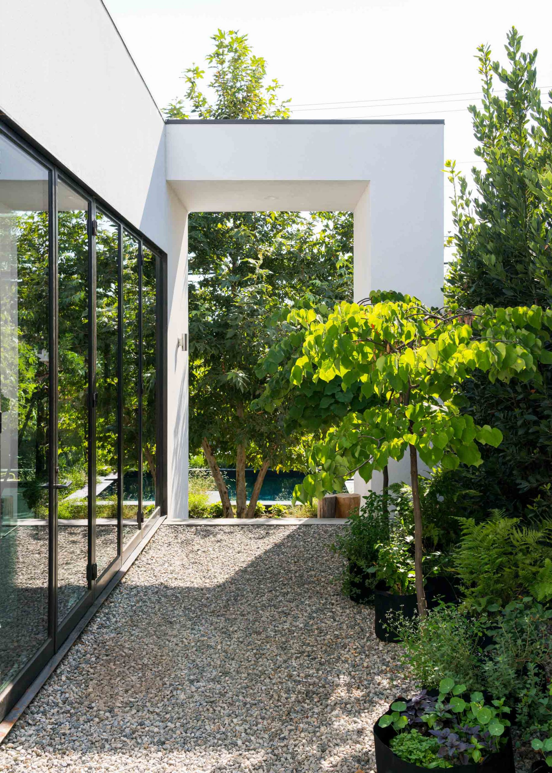 pebble pathway with white architecture and tree