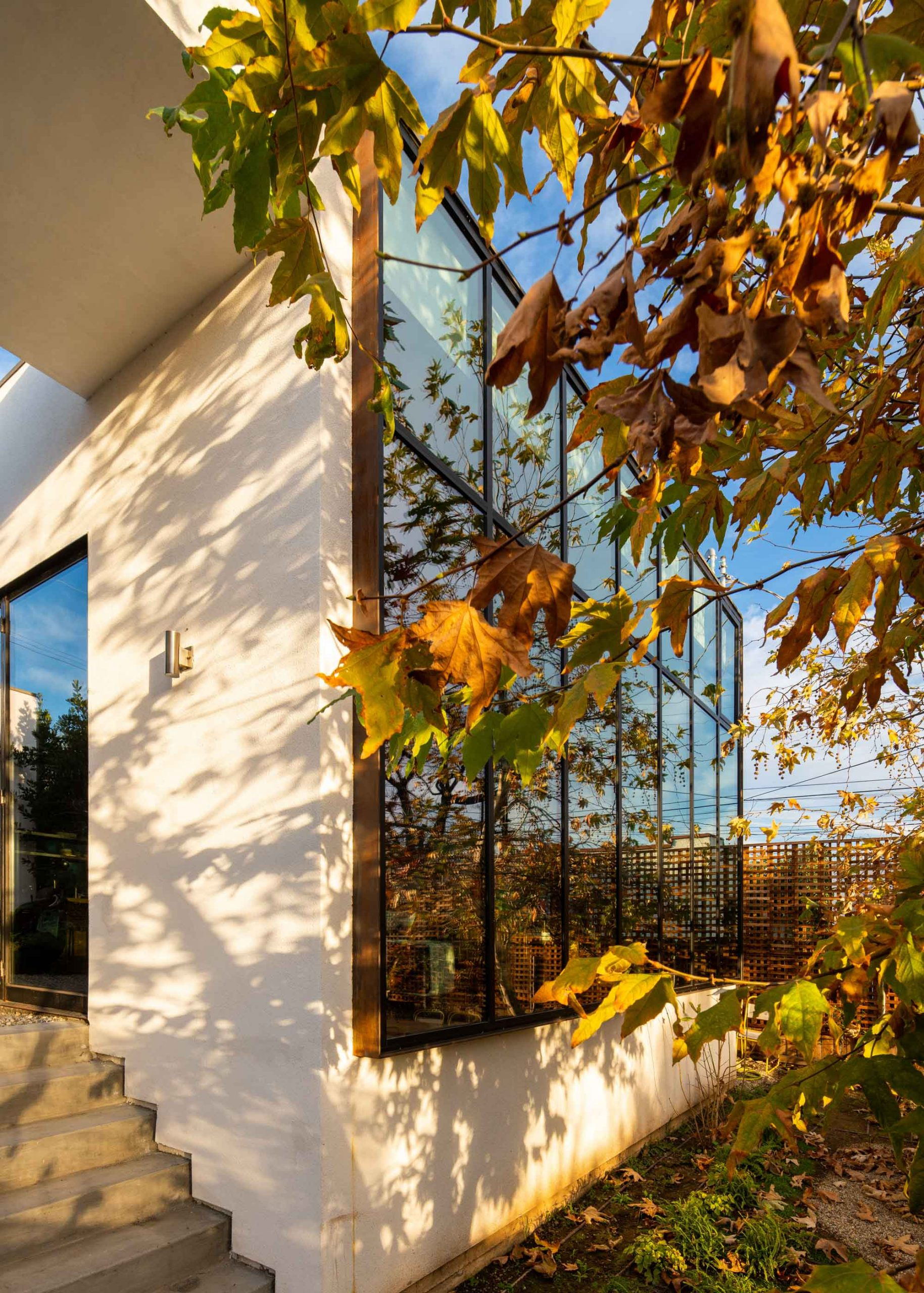 modern home exterior with fall foliage