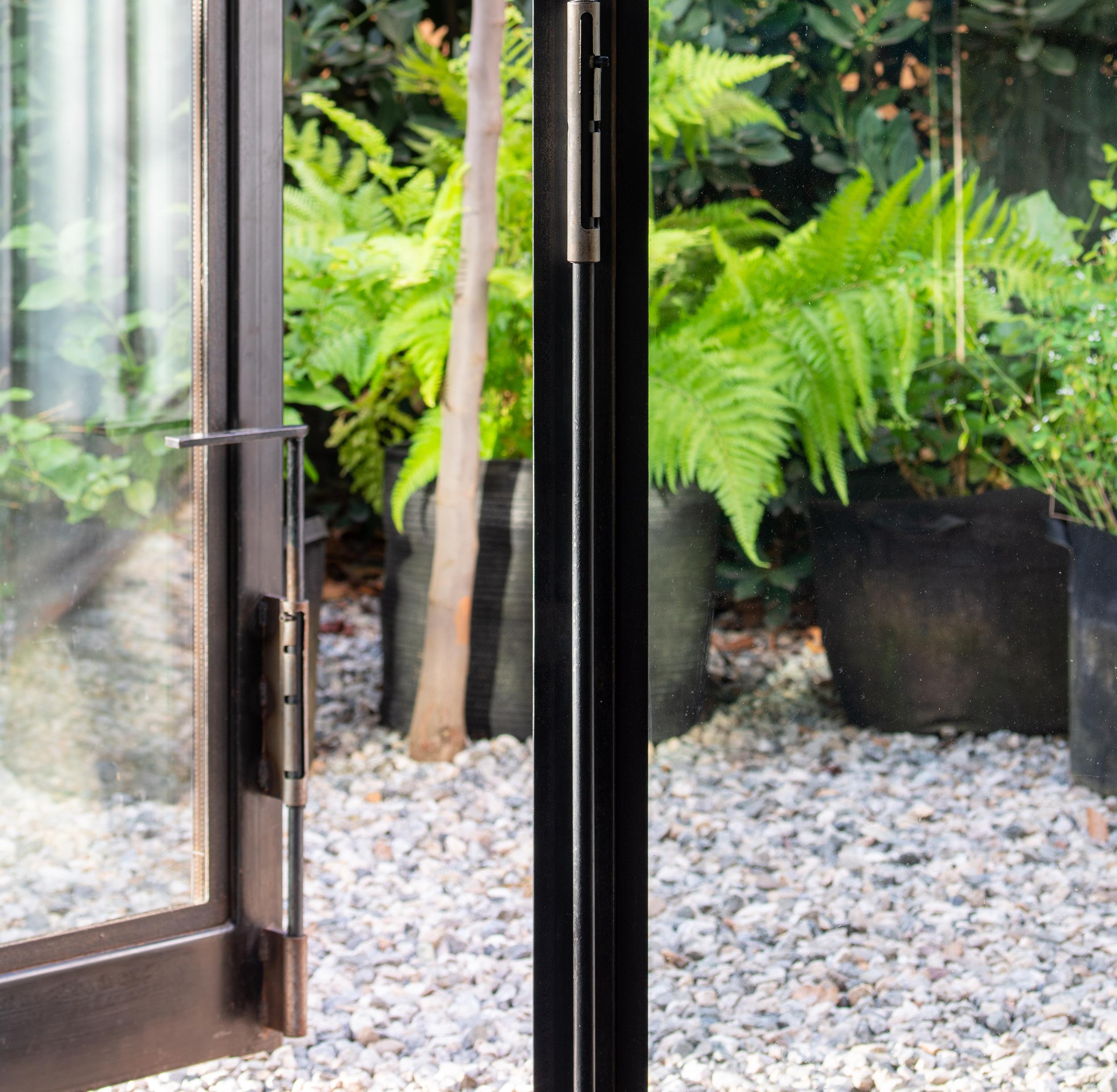 fern and plants in pots through glass door