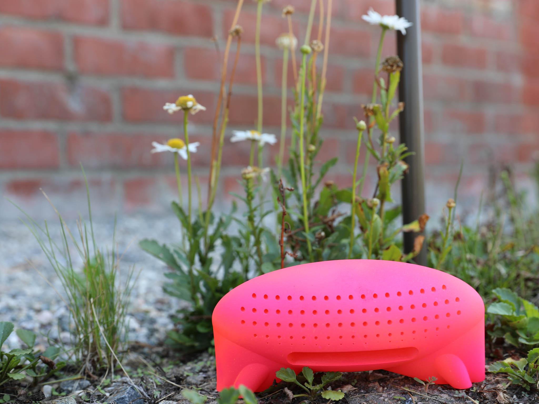 pink bug hotel design