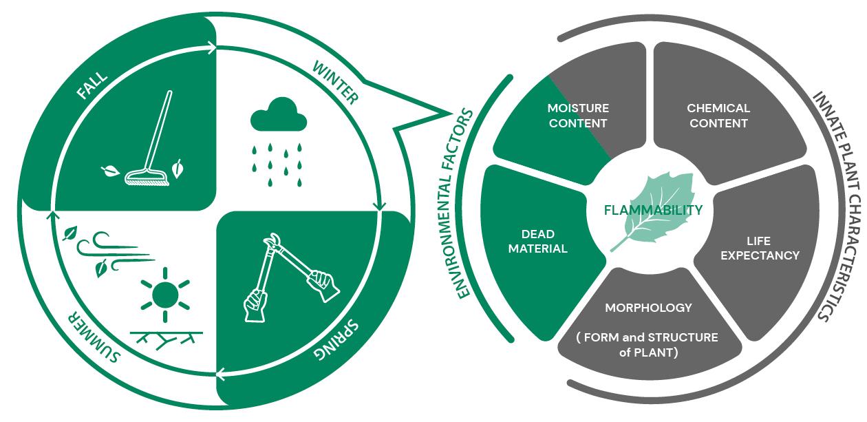 Plant characteristics diagram: flammability based of environmental factors