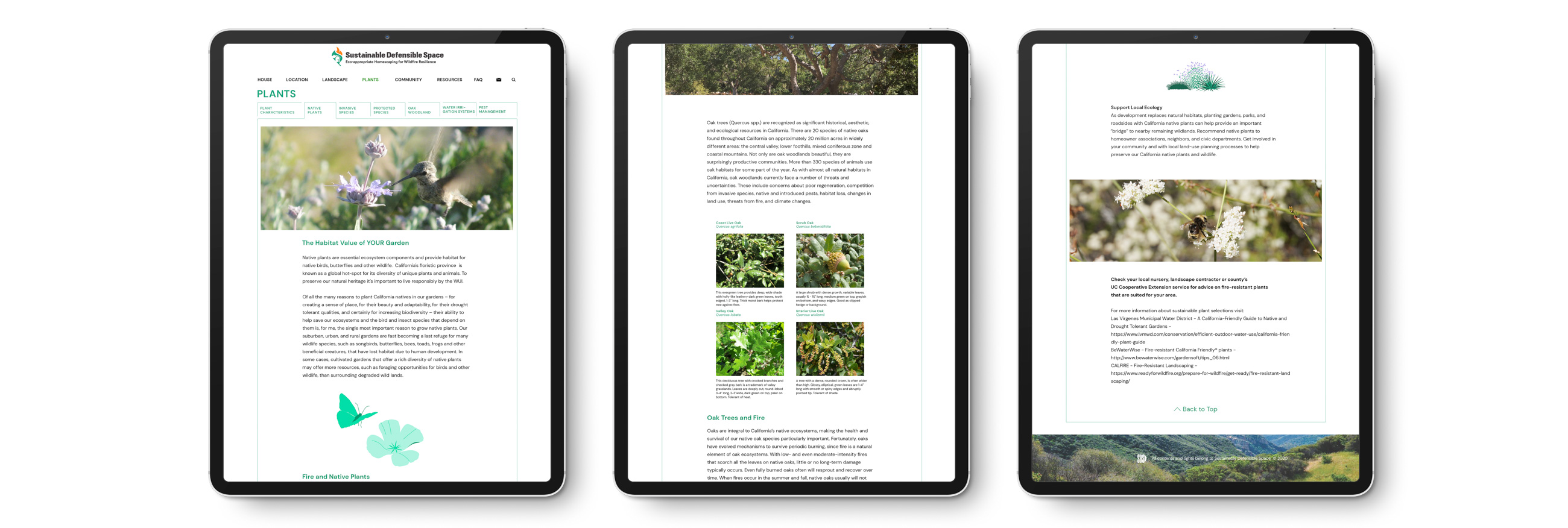 3 iPads showing different webpages from the Sustainable Defensible Space website