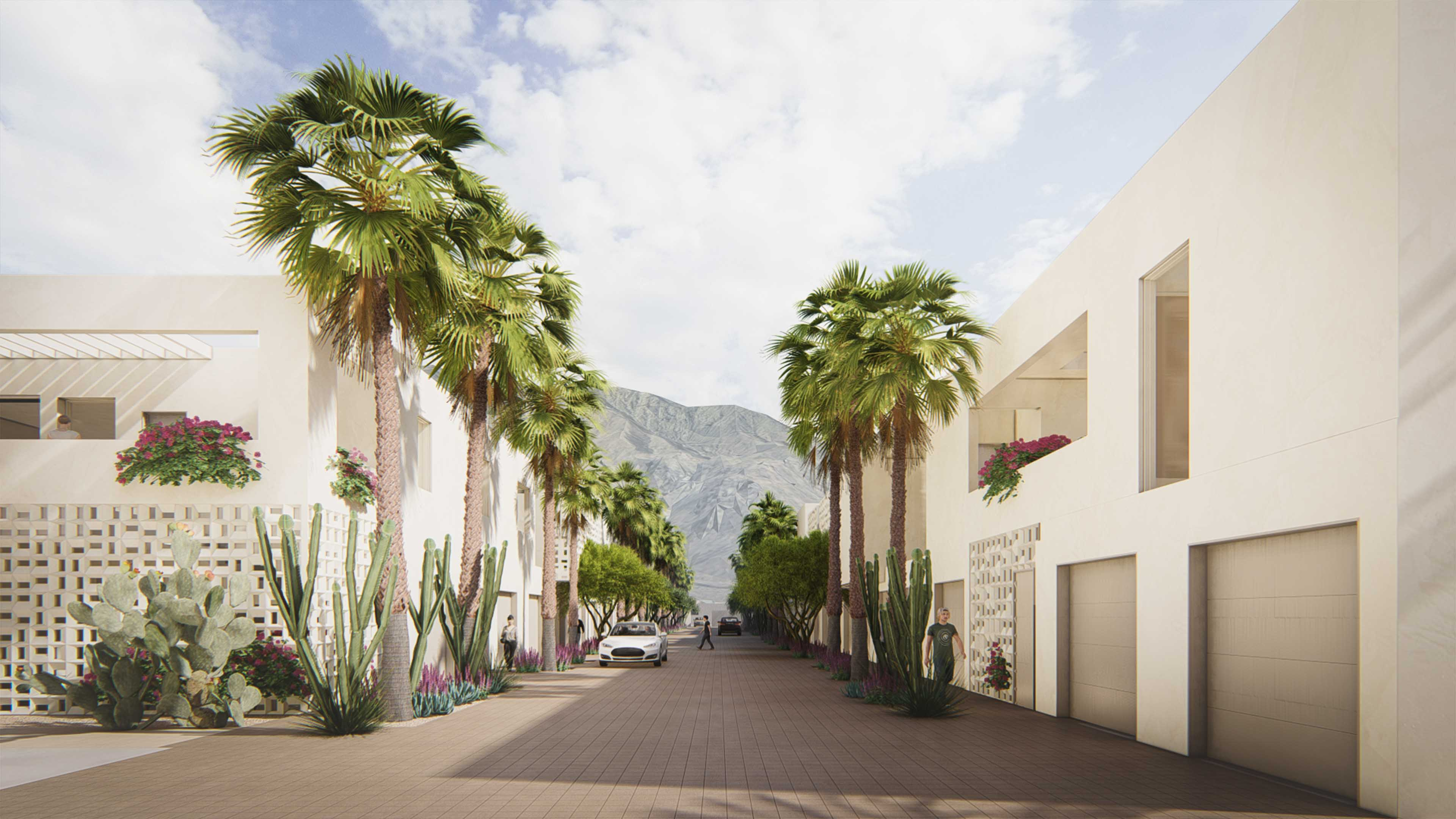 Alleyway lined with palm trees with a view of the mountains peeking in the center